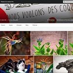 NOUS VOULONS DES COQUELICOTS!                                                                     STOP-PESTICIDES! thumbnail