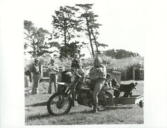 """Guests experiencing farm life at Pearce's """"Maramau"""" property. Kahutara. Wairarapa"""