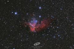NGC 7380 nebulosa del mago (gerardtartalo) Tags: nebula nebulosa universe universo cosmos espace espacio telescope telescopio