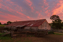 Shearing shed sunrise, Tungkillo - South Australia (Trace Connolly Photography) Tags: australia natur natura natural nature naturaleza naturephotography colour color colourful outdoor outdoors outside eos canon sunlight exposure flickr landscape earth environment environmental environmentalphotography sunset sunrise contrast red green yellow blue black white scene scenery cloud clouds sky scenic weather holiday view country countryside orange purple pink building architecture stone brick gate sheep sheari shearing shearingshed dawn grass farm fence fenced friday fencedfriday
