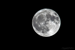 Lune_4717 (lucbarre) Tags: moon lune astre ciel pleine nouvelle phase lunaire sky