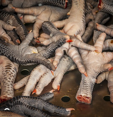 Hungry? (allentimothy1947) Tags: chickenfeet dayarddongshimarket food places taichung taiwan claws cut ediable fried legs raw skin chicken feet1438 feet daya rd dong shi market other keywords