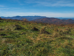 Great Smoky Mountains from Max Patch, Pisgah National Forest, North Carolina (netbros) Tags: pisgahnationalforest northcarolina maxpatch greatsmokymountains mtsterlingridge mtsterling netbros internetbrothers
