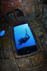 F R A M I N G (Randi Ang) Tags: glennnusawreck glenn nusa wreck wreckdive shipwreck gili trawangan lombok indonesia gilitrawangan giliislands underwater scuba diving dive photography wide angle randi ang canon eos 6d fisheye 15mm randiang wideangle