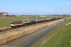 LOCON 9904 - Moordrecht 28-02-2016 (NovioSites) Tags: 47500 9904 locon locomotive loc trein train rail netherlands holland moordrecht ketelwagens kijfhoek alstom ns1600