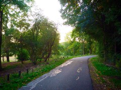 The dreamy path (marionvankempen) Tags: atmosphere natural eveninglight holland herfst throughherlens walkingpath trees landscape light autumn nature portraits finesse group