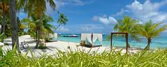 Reception Beach (tonybransby) Tags: atmosphere kanifushi lhaviyani atoll maldives