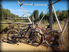2018 Bike 180: Day 166 - Wakefield Park (mcfeelion) Tags: cycling bike bicycle mtb wakefieldpark annandaleva bike180 2018bike180