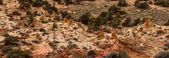 Fairyland Basin @ Paria (Chief Bwana) Tags: az arizona pariaplateau navajosandstone vermilioncliffs panorama whiteknolls psa104 chiefbwana