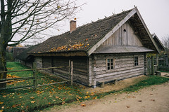 Belarusian State Museum of Folk Architecture and Ruval Lifestyle (Serbian Dictator) Tags: countryside museum history belarus fall village building roof tree sky grass leaves