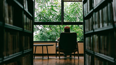 窗外的綠樹 (ChengEric0702) Tags: sony taiwan green library a7 55mm tree fe55za a7r3
