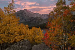 Colorful Colorado Autumn Sunset (NickSouvall) Tags: gold yellow orange red aspen leaves trees forest fall autumn color colorful foreground overlook view valley bear lake longs peak mountain rocky mountains national park estes colorado sunset pink sky dramatic light alpenglow glow colors landscape nature photography photo