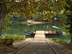 Pas de la barca Miravet (muntsa-joan-color) Tags: river rio water tree boat ebre olympus rural ebro autumn tardor otoño miravet catalonia catalunya nature