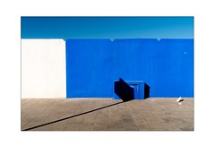 blue 2 (massimodepadova) Tags: