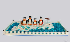 The Penguins of Madagascar (Kloou.) Tags: lego kloou pingouins madagascar penguins commandant kowalski rico soldat skipper private zoo penguinsofmadagascar