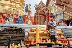 Lotus flowers .. Chiang Mai (geolis06) Tags: geolis06 asia asie thaïlande olympus chiangmai doisuthep watphrathatdoisuthep bouddhisme bouddha buddhism religion pilgrim pélerin prière prayer statuev lotus flower fleur olympuspenf olympusm918mmf4056