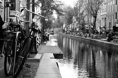 Amsterdam (franciscojaviersáncheztrives) Tags: amsterdam barriorojo canales flores travel viajes holanda
