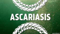 Ascaridosis: How to avoid this type of helminthiasis? (netbolezniamru) Tags: ascaris ascariasis worms helminths parasites diarrhea intestines piperazine health medicine
