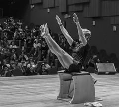 "VI Congresso Brasileiro de Pilates • <a style=""font-size:0.8em;"" href=""http://www.flickr.com/photos/143194330@N08/44610472265/"" target=""_blank"">View on Flickr</a>"