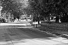 Skidby  Monochrome (brianarchie65) Tags: skidy eastyorkshire eastridingofyorkshire yorkshirecameraramblers yorkshireblackandwhite road street trees hedges cars houses church roads blackandwhite blackandwhitephotos blackandwhitephoto blackandwhitephotography blackwhite123 blackwhiterealms flickrunofficial flickr flickrcentral flickruk flickrinternational ukflickr unlimitedphotos ngc canoneos600d geotagged brianarchie65