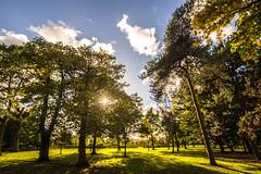 Haslam Park (Gary S Bond) Tags: great britain united kingdom 2018 a65 alpha autumn city england haslam lancashire leaves north october park preston shabbagaz sony uk west greatbritain unitedkingdom