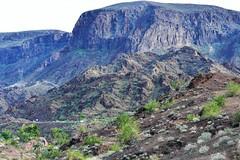 Desert hike (thomasgorman1) Tags: mountains nikon nature scenic hike desert shrubs az arizona trees view