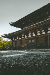 Kyoto1 (Yesidster) Tags: japan travel nature contrast photography asia cherryblossoms mtfuji photo aov architecture design home urban