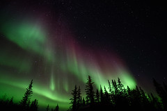 Aurora Light Beams (ificouldreadmymind) Tags: aurora sky night star yellowknife canada northernlight