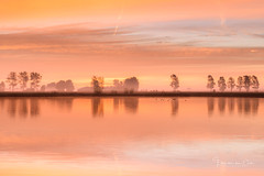 Early morning (Ellen van den Doel) Tags: zonsopkomst natuur color nature mist reflectie nederland outdoor fall herfst ochtend morning zonsopgang kleur reflection fog water goereeoverfklakkee sunrise netherlands stadaantharingvliet zuidholland nl