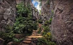 Prachov (Don César) Tags: czechrepublic republicacheca europa europe park prachov rocks rocas avatar kingsteps alley callejon piedras camino