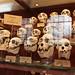 Crânes de singes hurleurs