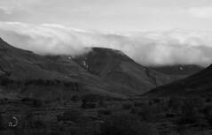 La vallée/the valley (bd168) Tags: landscape mountains sky grasses bushes field monochrome fog brouillard nuages clouds islande iceland em10markii m14150mmf456iied