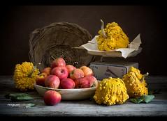 BODEGÓN CON MANZANAS Y CALABAZAS (Miguel Calleja) Tags: bodegón stilllife stilleben naturemorte naturalezamuerta naturamorta otoño autumn fall manzanas manzana apple apples pomme pommes calabaza calabazas citrouille pumpkin