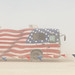 Motorhome With American Flag Painted On The Side