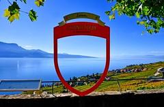 Grand Tour, Lavaux (Diegojack) Tags: vaud suisse lavaux chexbres paysages léman lac vignoble vignes grandtour d500 nikon nikonpassion groupenuagesetciel