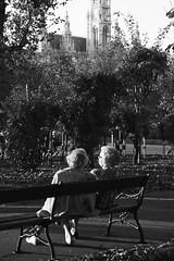 Street life - Vienna (konceptsketcher) Tags: vienna street photography 2018 konceptsketcher canon70d park volksgarten sunny autumn bw bench