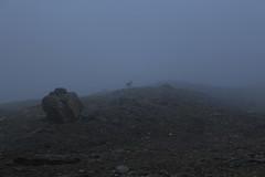 même par brouillard la montagne est un émerveillement :) (bulbocode909) Tags: valais suisse valdesdix montagnes nature cabanedesdix bouquetins rochers brume brouillard
