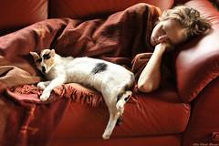Siesta for two (Rita Eberle-Wessner) Tags: girl cat sleeping mädchen frau katze schlafen sofa decke blanket red rot glückskatze dreifarbig threecolouredcat tricolor manekineko schildpatt
