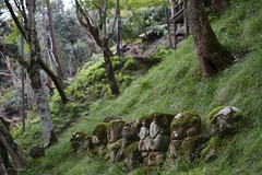 memories (ababhastopographer) Tags: kyoto sagano otaginenbutsuji rakan arhatfigure folkbelief stonefigure 京都 嵯峨野 愛宕念仏寺 羅漢像