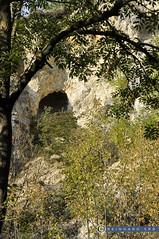 Niederösterreich Weinviertel Klement_DSC0577A (reinhard_srb) Tags: niederösterreich weinviertel klement steinbruch kalkstein klippe lanschaft aufgelassen alt felsen bäume vegtation sand schotter baum höhle getrüpp steil