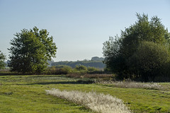 _IMG2492 (Henk de Regt) Tags: the netherlands gelderland natuur nature landscape grass bos forest trees zonsopkomst sunset sundown zonsondergang swamp nederland veluwe landschap gras water bomen moeras