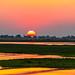 Sunset in Chobe
