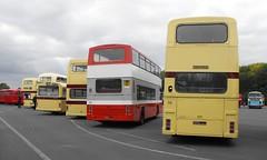 LCT @ Showbus 2018 (10) (Andy Reeve-Smith) Tags: leicestershire leics leicester leicestercitytransport castledonington doningtonpark donington derbyshire derbys showbus 2018 showbus2018