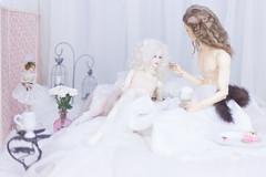 delisious (01) (toriasoll) Tags: bjd abjd doll dolls dollphotography dollphoto soom soomkorea dollsoom soomheliot heliot heliotdreamripper gluino gluinovamp