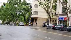 Spring - Primavera (Raúl Alejandro Rodríguez) Tags: lluvia rain frio cold árboles trees asfalto asphalt autos cars signs carteles letreros primavera spring buenos aires argentina