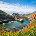 Boscastle and the Harbour