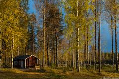 Syysilta, Autumn evening (NI5A6633LR) (pohjoma) Tags: haapovirta iltaaurinko ruska sauna syksy canoneos5dmarkiv finland canonef24105mmf4lisusm autumn fall autumncolors sunshine evening landscape scenery