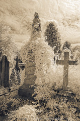 Ascending (James Etchells) Tags: arnos vale garden cemetery bristol city urban ir infrared sepia old antique photographic toning effect 18th century eighteenth nikon photography tomb tombs landscape landscapes sky clouds portrait colour color architecture ancient experiment exploring past heritage natural world nature light south west england uk britain monument abandoned overgrown statue