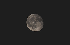 Moon (marvinkingston) Tags: moon crater astro space universum lunar view canon eos 80d 70300 lightroom amazing beautiful sky watcher mond vollmond flickr lens telescope photo photography astrophotography astronomical halfmoon skywatcher astronomy planet himmel outdoor fullmoonfever luna