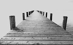 . . .  endless . . . (christikren) Tags: endless uferlos unendlich austria blackwhite christikren grey lake monochrome panasonic photography landingstage wood lines happy europa mono bw